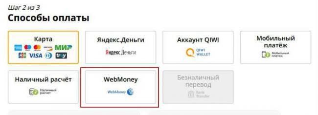 ali-web-2.jpg