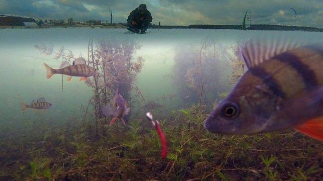 kak-sdelat-podvodnuyu-kameru-svoimi-rukami-34.jpg