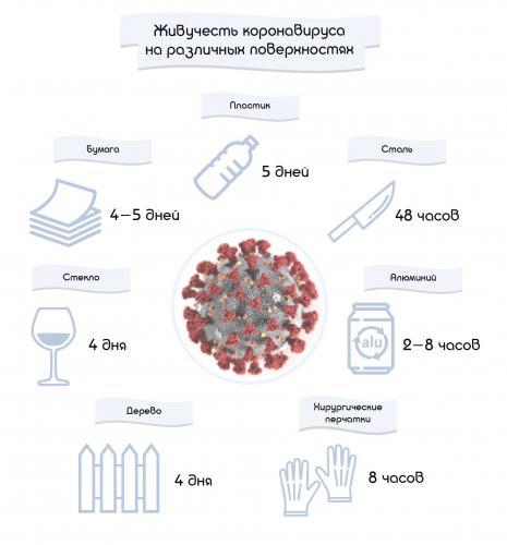 zhivuchest-koronavirusa.jpg