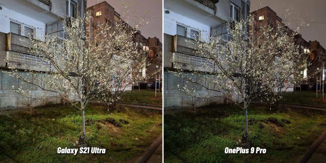 OnePlus-9-Pro-vs-Galaxy-S21-Ultra-Camera-comparison-5-55-screenshot_1616762333-scaled.jpg